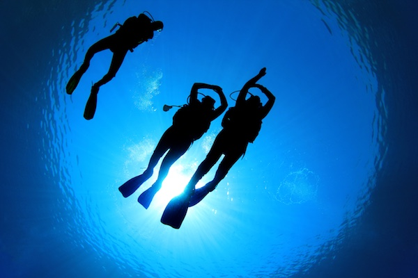 Divers in silhouette